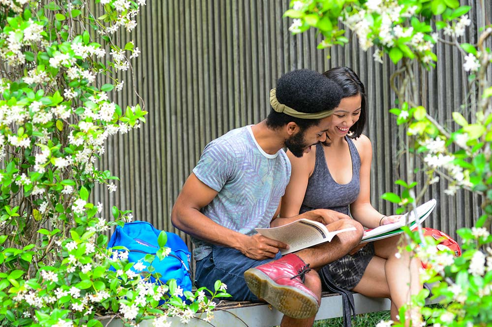 Students studying in Pocket Park