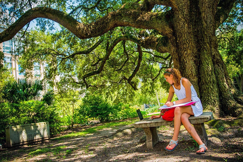 Tulane student studies under Live Oak tree